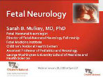 red background slide that says Fetal Neurology
