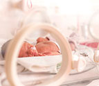newborn baby in an incubator