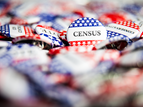buttons that say census