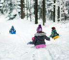 Children sledding in a winter forest