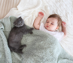 Toddler sleeping with kitten