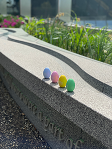 White House Easter eggs