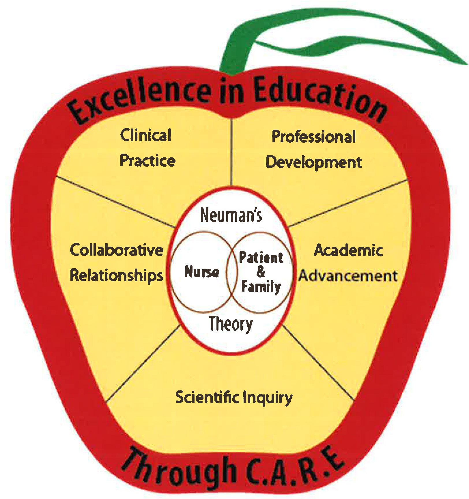Advancing  Professional  Practice through Learning Excellence